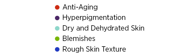 Anti-Aging Hyperpigmentation Dry and Dehydrated Skin Blemishes Rough Skin Texture